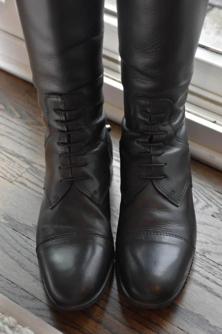 Show Ring Shine: Boot Polishing101